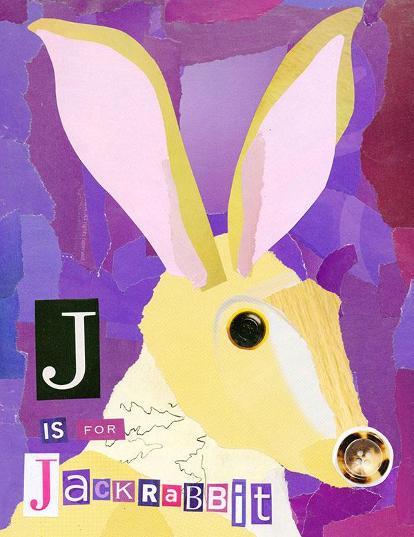J is for Jackrabbit